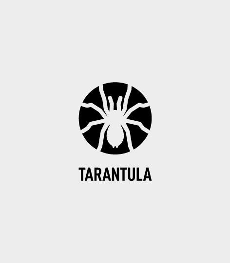 logo_tarantula_2